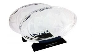 Fox Sports Custom Lucite Award