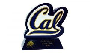Custom Lucite Athletic Award